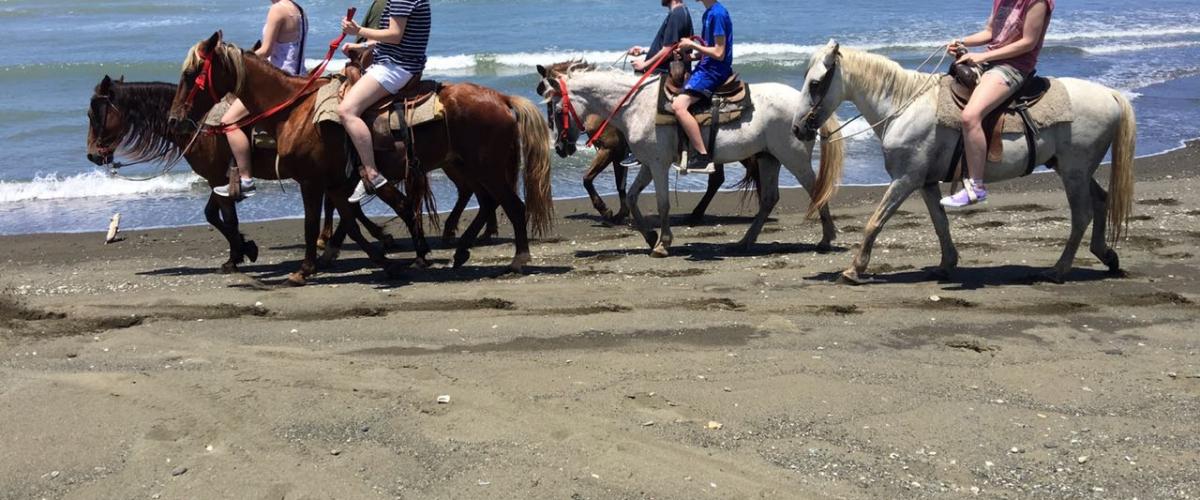 horseback-014