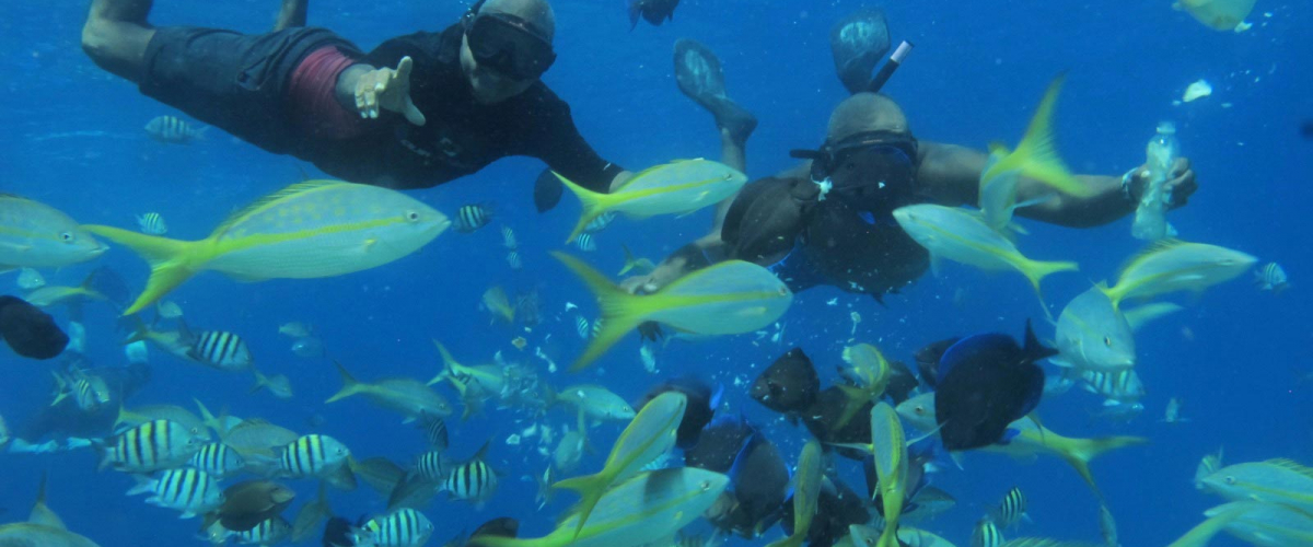sosua-snorkeling-004
